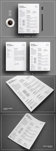Resume/CV - BS. Perfect Resume. $10.00