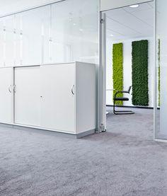 MossPanel office