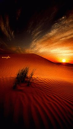 The Sahara is the largest hot desert and third largest desert after Antarctica and the Arctic. Its combined surface area of 9,400,000 square kilometres —accounting for substrates such as the Libyan