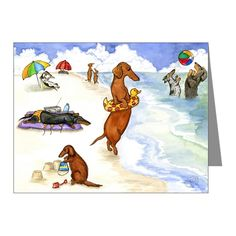 Dachshunds on the beach - Wirehaired, longhaired, silver Dapple, Black and Tan, Piebald - but not just catching frisbees - wearing bikinis, building sandcastles and using duckie floats.