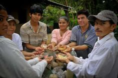 Check out this month's projects working towards funding food solutions! Visit kutoa.org
