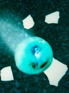 La mela che cadde in terra foto Alessandra Russo