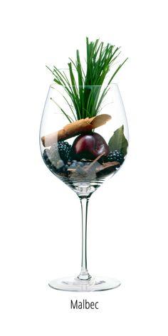Wine Advertising, Wine Chart, Wine Varietals, Wine Folly, Vides, Port Wine, In Vino Veritas, Disney Food, Vintage Signs