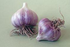 Garlic, Survival, Vegetables, Chemistry, Vegetable Recipes