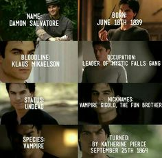I love the fun brother Vampire Diaries Damon, Vampire Diaries Quotes, Vampire Diaries The Originals, Series Movies, Movies And Tv Shows, Vampire Daries, Hello Brother, Original Vampire, Fandoms