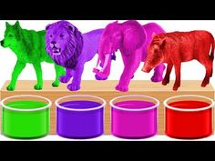 Bathing Colors Fun Wild Animals | Animals Colors for kids | Learn Wild Animals Names And Sounds - YouTube