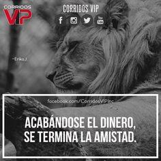 Es triste pero cierto.! Suele pasar.!  ____________________ #teamcorridosvip #corridosvip #corridosybanda #corridos #quotes #regionalmexicano #frasesvip #promotion #promo #corridosgram - http://ift.tt/1HQJd81