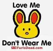 Dont wear me