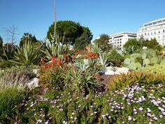 """""""Le Jardin Albert 1er"""", Nice France (Marzo)"""
