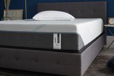 Comfort Mattress, Mattress Sets, Mattress Protector, Quilt Top, Bed Frame, Comforters, Relax, Medium, Furniture