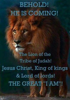 HE IS COMING! Every eye will see, every knee will bow, and every tongue will confess that Jesus Christ is Lord! Tribe Of Judah, He Is Coming, Jesus Is Coming, Christian Life, Christian Quotes, The Great I Am, Lion Of Judah, King Of Kings, Bible Scriptures