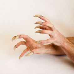 Sabretooth/Beast/Monster/Teen Wolf/Werewolf/Venom Claws Comfortable and Easy to Apply Sabretooth/Werewolf/Venom Claws Hand Sculpted by DarkMatterProps Source by Hand Reference, Pose Reference, Drawing Reference, Vampires, Teen Wolf Werewolf, Yennefer Of Vengerberg, Malia Tate, Lily Potter, Harry Potter