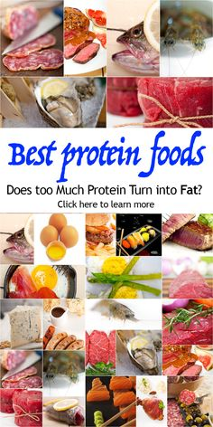 Is it possible to have too much protein in the body? Is eating too much protein bad for you? What are the best protein foods? #proteinfoods #protein