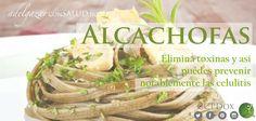 La #alcachofa es ideal para limpiar nuestro cuerpo, nos ayuda a eliminar toxinas y así podemos prevenir notablemente las celulitis. Puedes incluir la alcachofa en cualquiera de tus comidas, por ejemplo: en salsas, ensaladas, arroces, pastas, etc. #TipsDox #adelgazar #adelgazarconsalud #salud #alimentacion #nutricion #ccpdox #dieta #tips #consejos