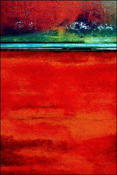 Red Tide by LuAnn.Ostergaard, via Flickr