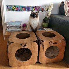 We'd like to wish Ted and Oscar a very Happy Birthday!    you are both gorgeous and cute and we are honoured that you chose our pods to help celebrate the big day  #cat #catsofinstagram #cats_of_instagram #catfurnature #catfurniture #catsinboxes #cattoy #INSTACAT_MEOWS #cutecat #PurrMachine #catsinboxes #catbox #Excellent_Cats #BestMeow #dailykittymail #thecatniptimes #catcube #catpod #ArchNemesis #FlyingArchNemesis #myindoorpaws #ififitsisits #cutecatcrew #catchalet #catnip #themeowdaily…
