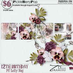 Lolly Bag - PU {by Tiramisu design} 12th Birthday, Birthday Celebration, Happy Birthday, Lolly Bags, Color Inspiration, Tiramisu, Digital Scrapbooking, Free, People