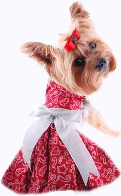 Christmas Puppy Dress, Harness Dress For Dogs, Holiday Puppy Dress, Pet Boutique