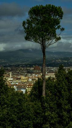 Veduta su Firenze dal Forte di Belvedere