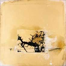 Sadatsugu toboe, photograph and oil on paper, 30cm h x 30cm w, 2003