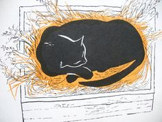 The Cat Thief by Joan Cass Illustration by William Stobbs