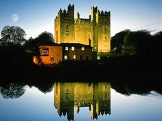 Day 135 - Bunratty Castle at night.  County Clare