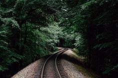 Railroad in forest  free high-resolution photo about Nature Travel Locations background forest germany green landscape nature perspective rail railroad railway ruegen rugen track tracks train travel tree trees
