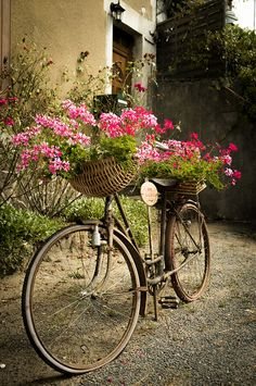 Flower bicycle, behuard village, France