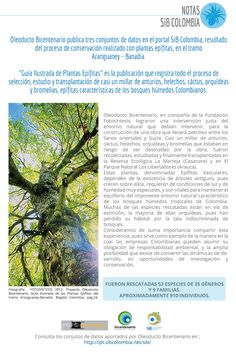 Nota de prensa - Oleoducto Bicentenario