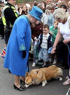 Queen Elizabeth II met a charming Corgi while visiting a train station