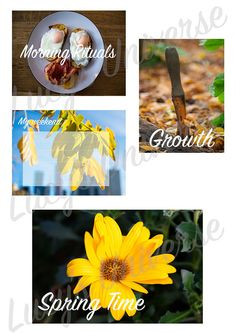 Project life cards, download and print!!! Spring Time, journal cards, food :)