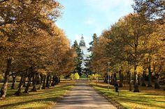 Fall colors Korsholm church in the park