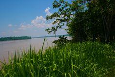 A shiny day at #pantherasanctua ry along the Rio Madre De Dios river