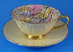 Shelley Oleander Rock Garden Chintz Cup And Saucer