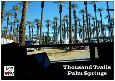 View out our rig at Thousand Trails Palm Springs - Date Palms galore! - http://www.loveyourrv.com/thousand-trails-zone-camping-pass/ #RV #RVing #camping