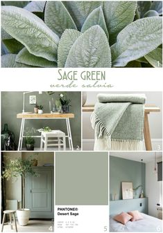 Sage Green Bedroom, Living Room Green, Green Rooms, Living Room Decor, Green Bedroom Colors, Color Palette For Home, Paint Colors For Home, Green Paint Colors, Colours