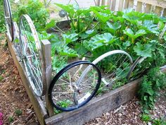 cool! garden bed fence made from bike tires!