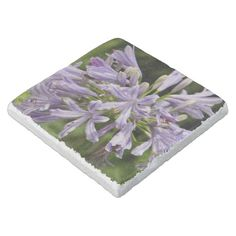 Shop Lily of the Nile Stone Coaster created by BDLstore. Stone Coasters, Custom Coasters, Travertine, Looking Stunning, Hostess Gifts, House Warming, Backdrops, Lily, Monogram