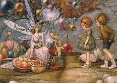 helen jacobs |  Fairy Market
