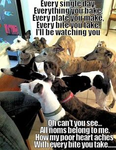 I'll be watching you . . .