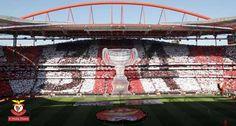 A Minha Chama: 34ª J: S.L. Benfica 4 marítimo 1
