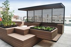 Reforma-412-Roofgardens-L14-rendering-017.jpg (600×399)