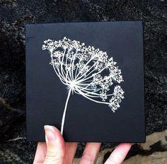 queen anne's lace, tattoo ideas
