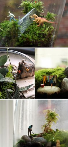 How to make a terrarium.  I think this would make a nice present. I adore the little people and dinosaurs! Jurassic Park terranium?