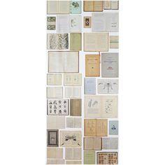 Biblioteca Wallpaper EKA-07 ❤ liked on Polyvore featuring home, home decor, wallpaper and eka