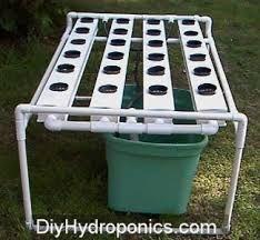 hydroponics diy google sgning