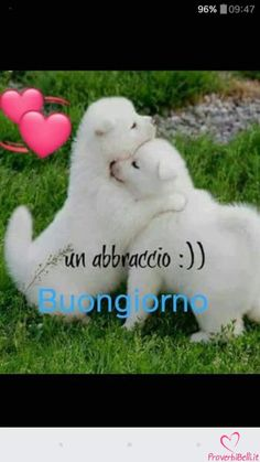 Italian Memes, Messages, Smiley, Animals And Pets, Good Morning, Snoopy, Feelings, Pictures, Fictional Characters