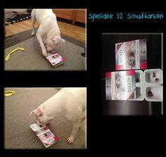 32. Schuifkarton.. geschikt voor: meer geoefende snuffelaar.... sloop spellen sowieso pas later aanbieden... In dit voorbeeld gebruik ik een kattensnoepjes plasticbakje waarover een karton geschoven zit... maar er zijn meerdere van dit soort verpakkingen te bedenken, zoals Renske verpakking, een kauwgom verpakking is ook reuze geschikt! het gaat erom dat de hond ofwel netjes zoals Max het karton van onderkant afschuift, of eraf scheurt! om bij de voertjes in de diverse compartimenten te…