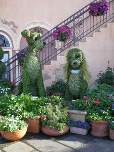 Flower and Garden show - Epcot 2012