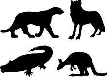ilustração de animais do zoologico em sombras - Pesquisa Google